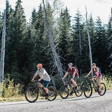 whistler-e-bike-tour